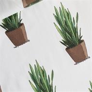 Image de Sansevieria - Coton Linon - Blanc Cassé